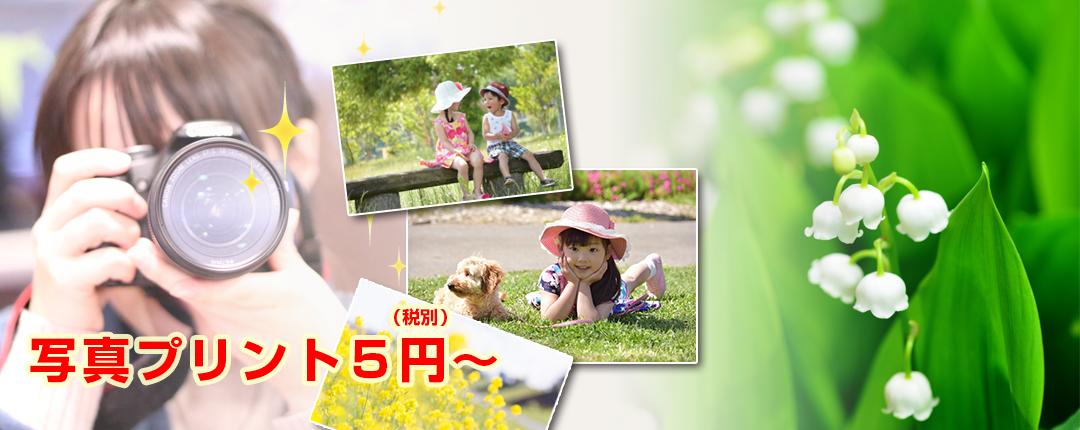 アプリプリントジャパン 写真プリント